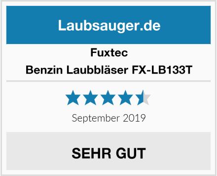 Fuxtec Benzin Laubbläser FX-LB133T Test