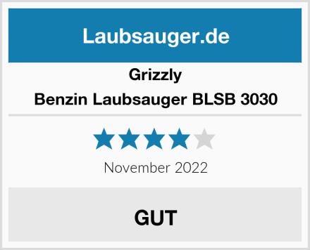 Grizzly Benzin Laubsauger BLSB 3030 Test