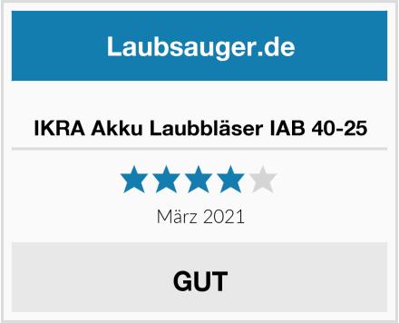 No Name IKRA Akku Laubbläser IAB 40-25 Test
