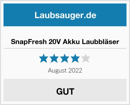 SnapFresh 20V Akku Laubbläser Test