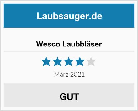 Wesco Laubbläser Test