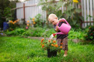 Corona-Quarantäne im Garten – die besten Tipps gegen Langeweile