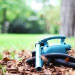 Laubsauger: Unnütz und schädlich für die Natur?