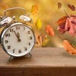 Zu welchen Uhrzeiten darf man Laub saugen?